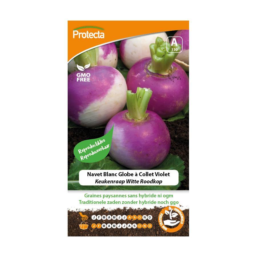 Protecta - Graines paysannes Navet Blanc Globe À Collet Violet