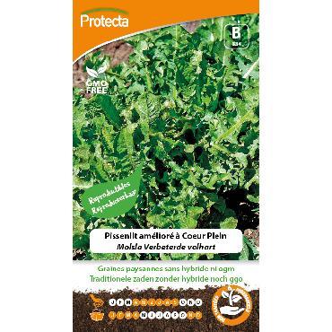 Protecta - Graines paysannes Pissenlit Amélioré À Coeur Plein