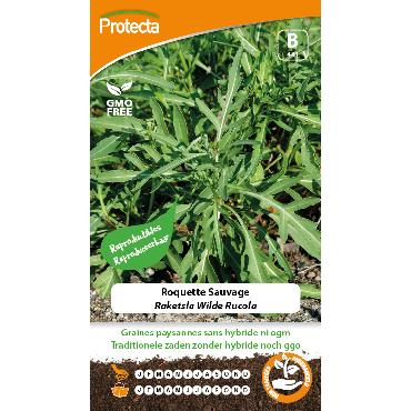 Protecta - Graines paysannes Roquette Sauvage