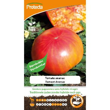 Protecta - Graines paysannes Tomate Ananas