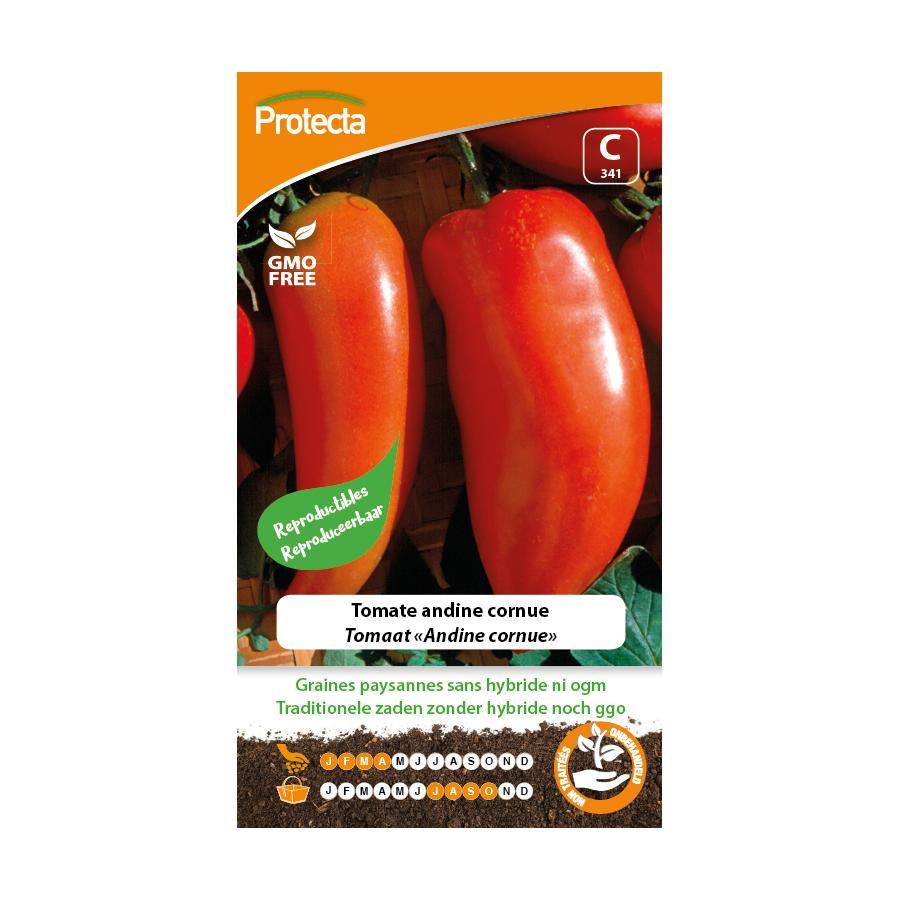 Protecta - Graines paysannes Tomate Andine Cornue