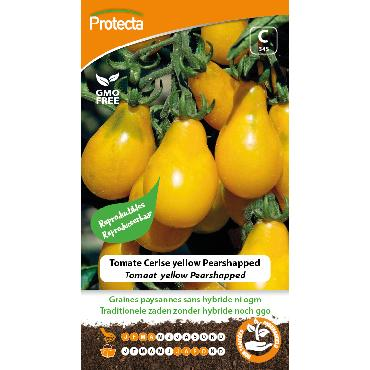 Protecta - Graines paysannes Tomate Cerise Yellow Pearshapped