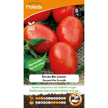 Protecta - Graines paysannes Tomate Rio Grande