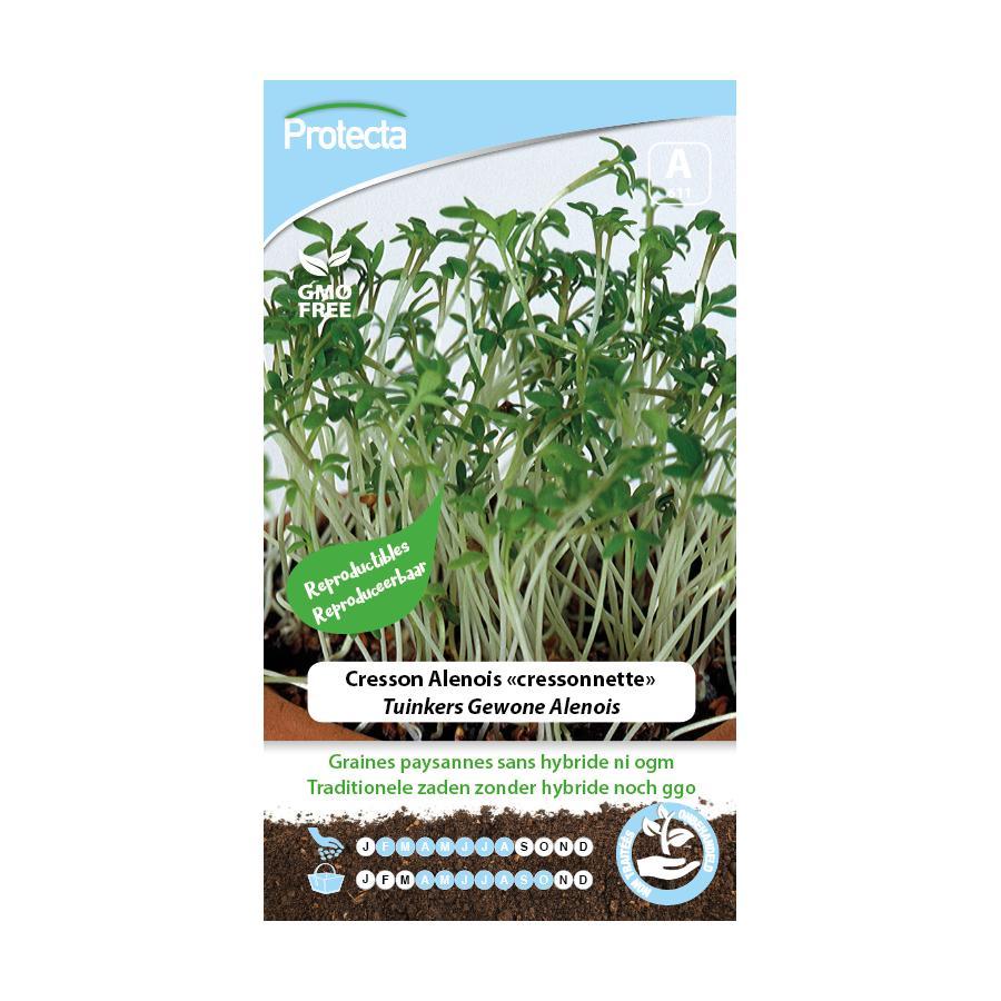 """Protecta - Graines paysannes Cresson Alenois """"Cressonnette"""""""