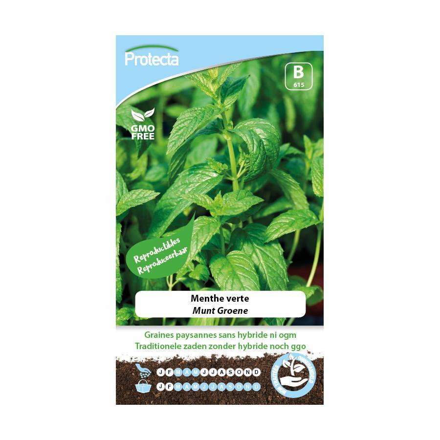 Protecta - Graines paysannes Menthe Verte