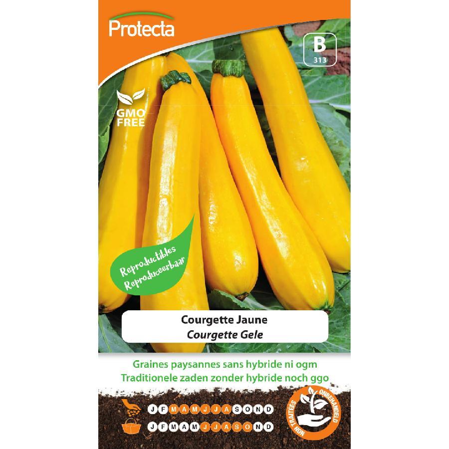 Protecta - Graines paysannes Courgette Jaune