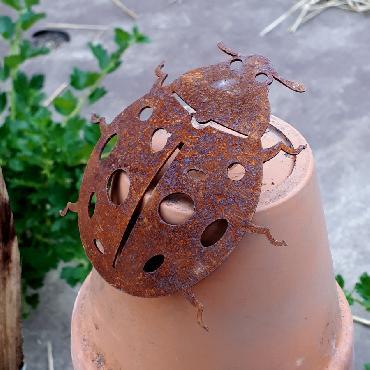 Coccinelle à visser en fer rouillé