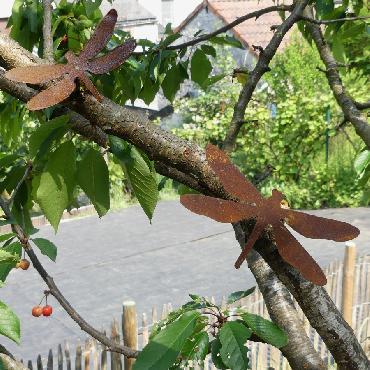 Petite libellule avec pique en fer rouillé
