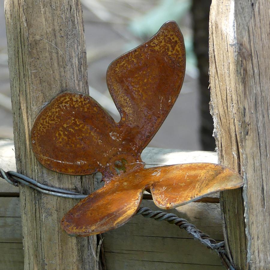 Petit papillon avec pique en fer rouillé