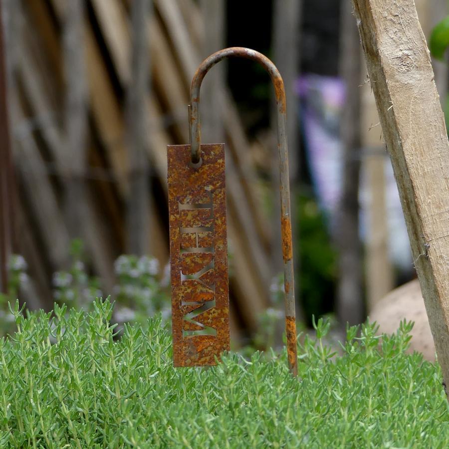 Etiquette thym à piquer en fer rouillé