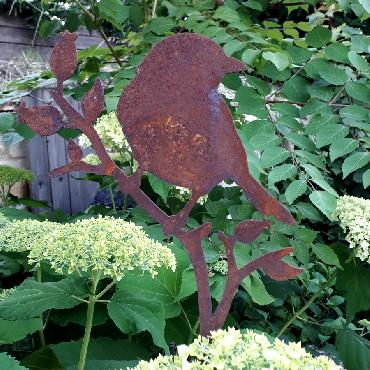 Oiseau merle sur branche de rosier avec pique en fer rouillé