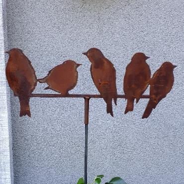 Famille de 5 oiseaux à piquer en fer rouillé