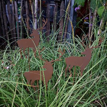 Petit cerf à piquer en fer brun