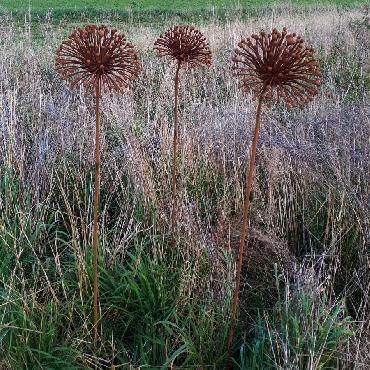 Fleur d'agapanthe diamètre 18cm à piquer en fer rouillé