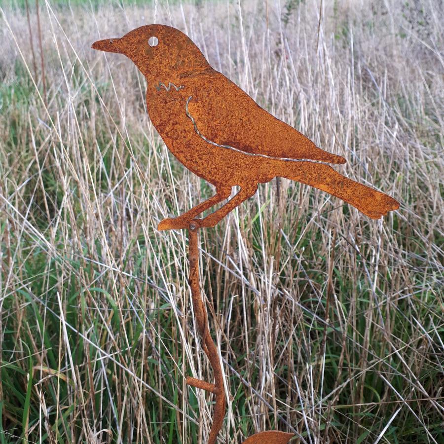 Oiseau coucou à piquer en fer rouillé