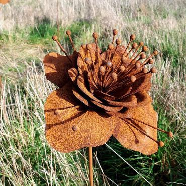 Fleur de héllébore diamètre 21cm à piquer en fer rouillé
