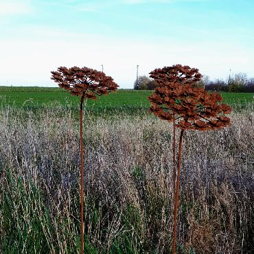 Petite fleur d'hortensia à inflorescences plates diamètre 28cm à piquer en fer rouillé