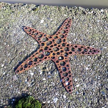 Etoile de mer à suspendre ou à poser en fer rouillé