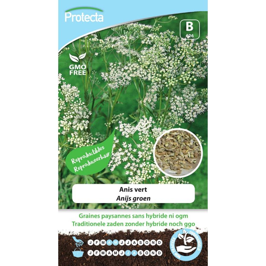 Protecta - Graines paysannes Anis Vert