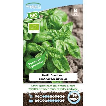 Protecta - Graines paysannes Basilic Grand Vert BIO