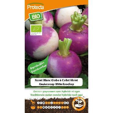 Protecta - Graines paysannes Navet Blanc Globe À Collet Violet BIO