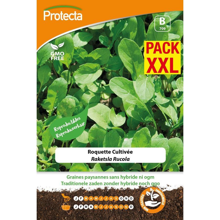 Protecta - Graines paysannes Roquette Cultivée XXL
