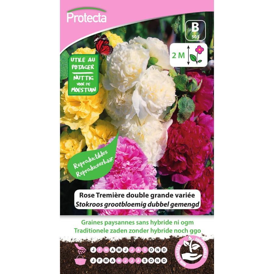 Protecta - Graines paysannes Rose Tremière Double Grande Variée