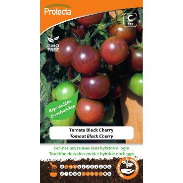 Protecta - Graines paysannes Tomate Black Cherry