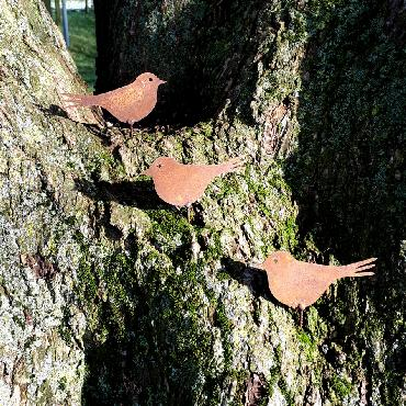 Oiseaux pinson H6cm à visser en fer rouille