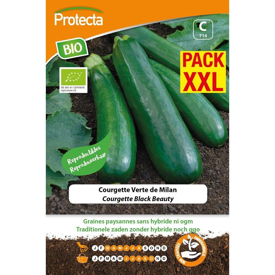 Protecta - Graines paysannes Courgette Verte De Milan Black Beauty BIO XXL