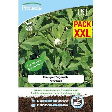 Protecta - Graines paysannes Fenugrec Trigonella foenum-graecum XXL