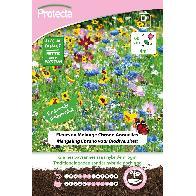 Protecta - Graines paysannes Fleurs en Mélange Biodiversité XXL