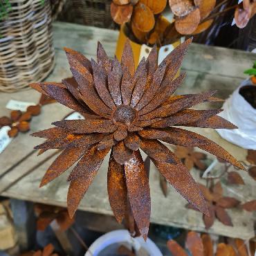 Fleur marguerite double 3D D23xH122cm à piquer en fer rouillé