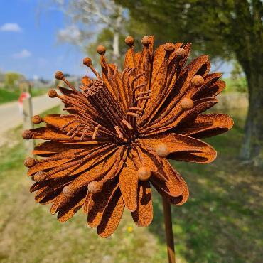 Fleur aster 3D D15xH147cm à piquer en fer rouillé