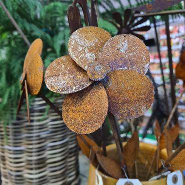 Fleur anémone D10xH49cm à piquer en fer rouillé