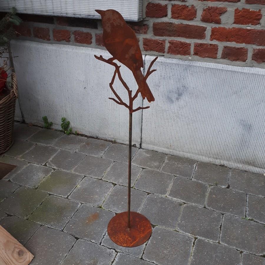 Oiseau petit sur pied
