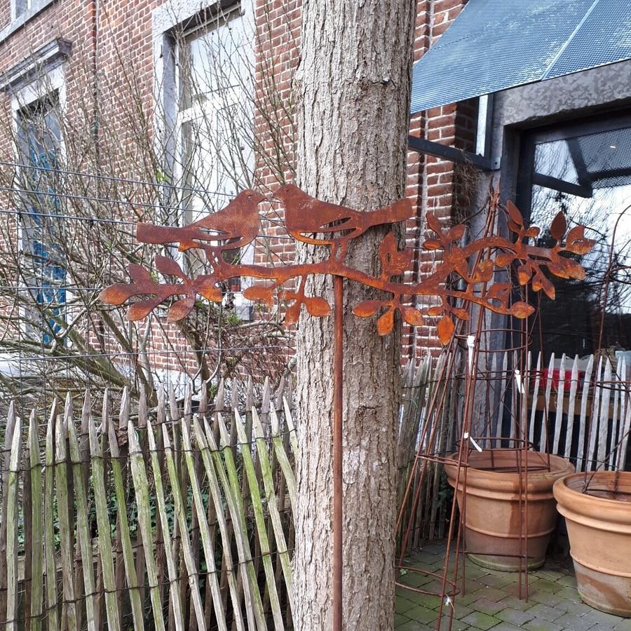 Deux oiseaux sur branche à piquer