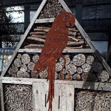 Perroquet à piquer