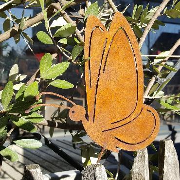 Papillon à vicer
