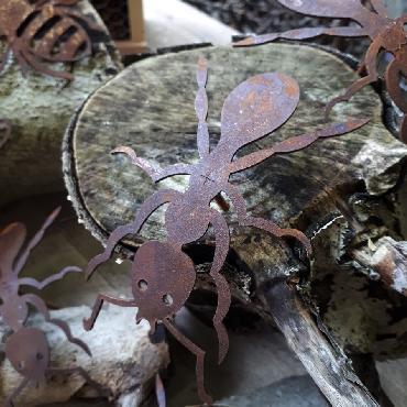 Fourmis à visser en fer rouillé