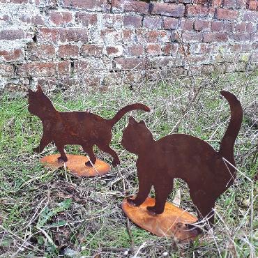 Duo de chatons qui se promènent à poser