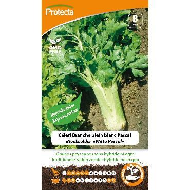 Protecta - Graines paysannes Céleri Branche Plein Blanc Pascal