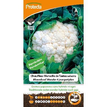 Protecta - Graines paysannes Chou Fleur Merveille De Toutes Saisons