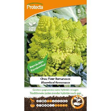 Protecta - Graines paysannes Chou Fleur Romanesco