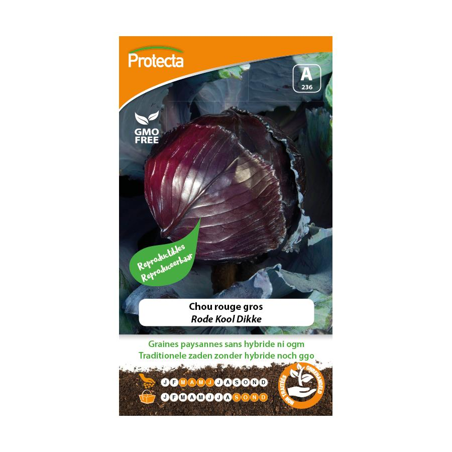 Protecta - Graines paysannes Chou Rouge Gros