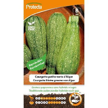 Protecta - Graines paysannes Courgette Petite Verte D'Alger