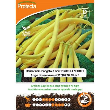 Protecta - Graines paysannes Haricot Nain Mangetout Beurre ROCQUENCOURT
