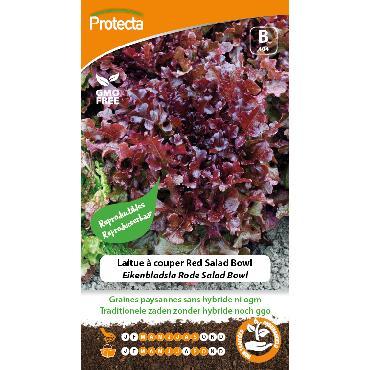 Protecta - Graines paysannes Laitue À Couper Red Salad Bowl