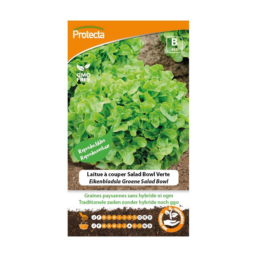 Protecta - Graines paysannes Laitue À Couper Salad Bowl Verte