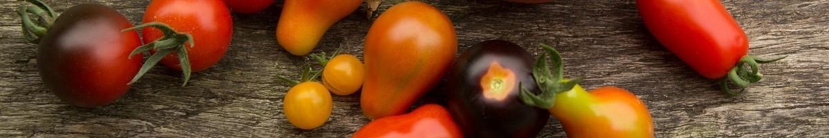 Graines paysannes : variétés de semences traditionnelles sans hybride ni OGM et graines bio